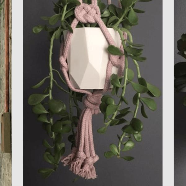 Cocoon&me plant hangers